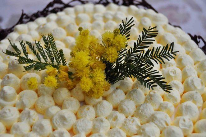 Torta mimosa e cioccolato (13)