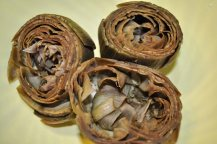 carciofo romanesco mammole ripieno (3)