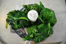 rotolo spinaci basilico e salmone affumicato (1)