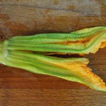 fagottini di fiori di zucca (5)
