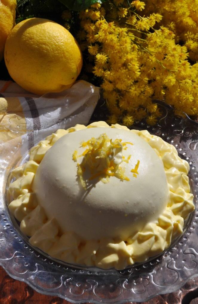 delizia al limone sal de riso (15)